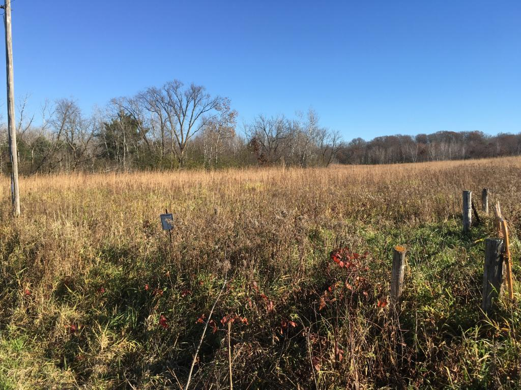 Several large meadows. Includes about 9 acres of tillable.