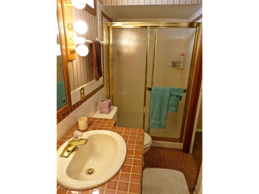 Basement Bath Shower
